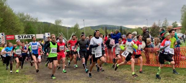 O-SEE Sportler erfolgreich beim 46.Zittauer Gebirgslauf